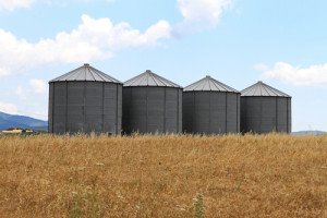 Photo credit: Four steel grain silo towers in rural Greece // ShutterStock