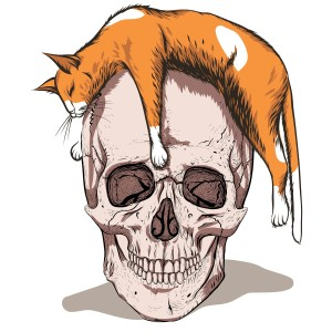 shutterstock/aksanav - simple skull with orange hat
