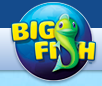 Ninth Circuit Reinstates Virtual Platform Gambling Lawsuit Against Big Fish